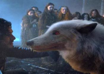 """Uma espécie extinta de lobo que serviu de inspiração para uma criatura mítica na famosa série """"Game of Thrones"""""""
